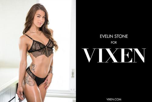 Vixen.com – Evelin Stone Sex For Favors [November 5, 2017]