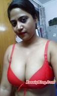Busty Desi Girlfriend Nude