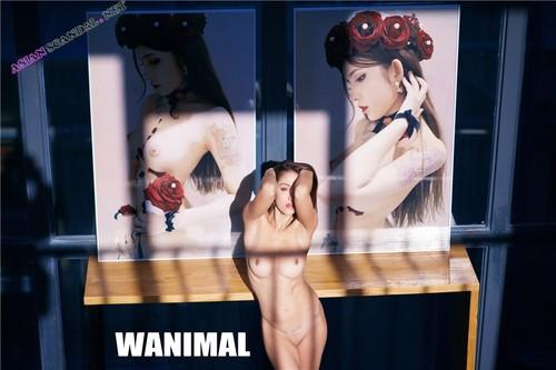 Wang Dong WANIMAL