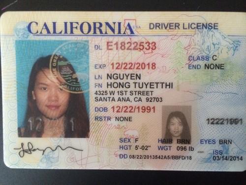 Nguyen Hong Tuyet Thi USA Vietnamese Takes Wall-Dildo In Toilet